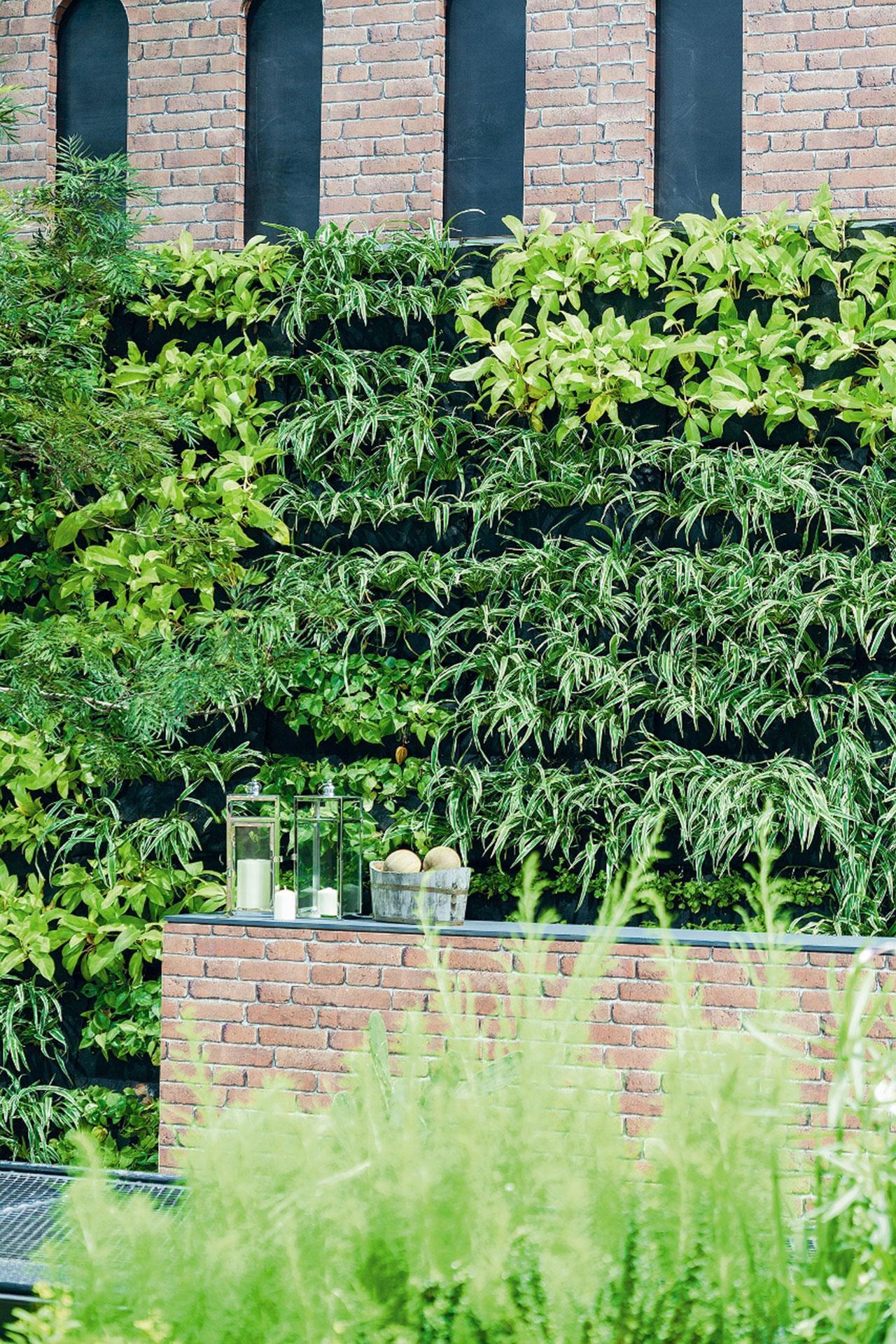สวนแนวตั้งWallgrowของบุณยเกียรติฟาร์มใช้ตกแต่งสวนโชว์ในงานบ้านและสวนแฟร์2016 สร้างมิติในแนวดิ่งได้ดีและช่วยเพิ่มพื้นที่สีเขียวได้อย่างน่าสนใจอีกทั้งยังให้ความรู้สึกเหมือนผนังที่ปล่อยให้ต้นไม้ขึ้นตามธรรมชาติ