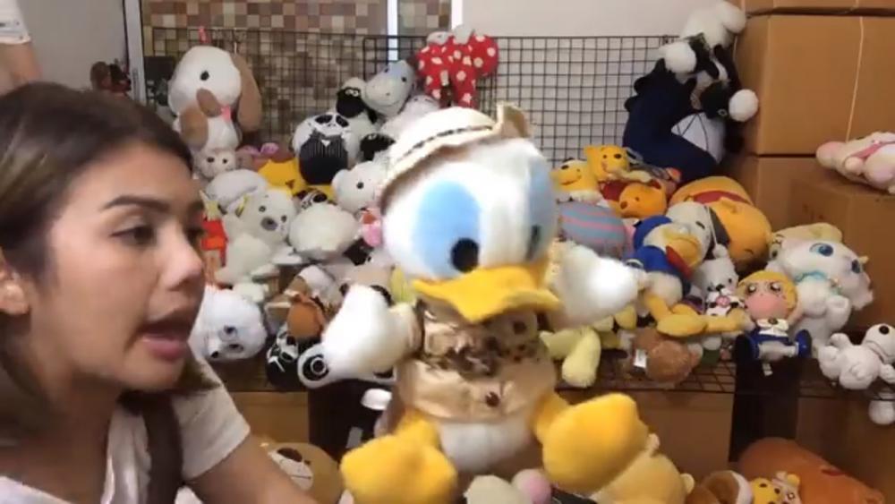 เหมามาจากญี่ปุ่นเพื่อเอามาขาย