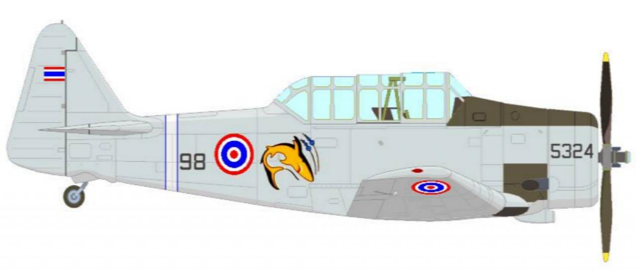 เครื่องบินโจมตีและฝึกแบบ T-6 ของฝูงบิน 53 กองบิน 5 ประจวบคีรีขันธ์ จะมีรูปฉลามท้องเหลือง ที่ลำตัวเป็นสัญลักษณ์ ภาพโดย รัชต์ รัตนวิจารณ์