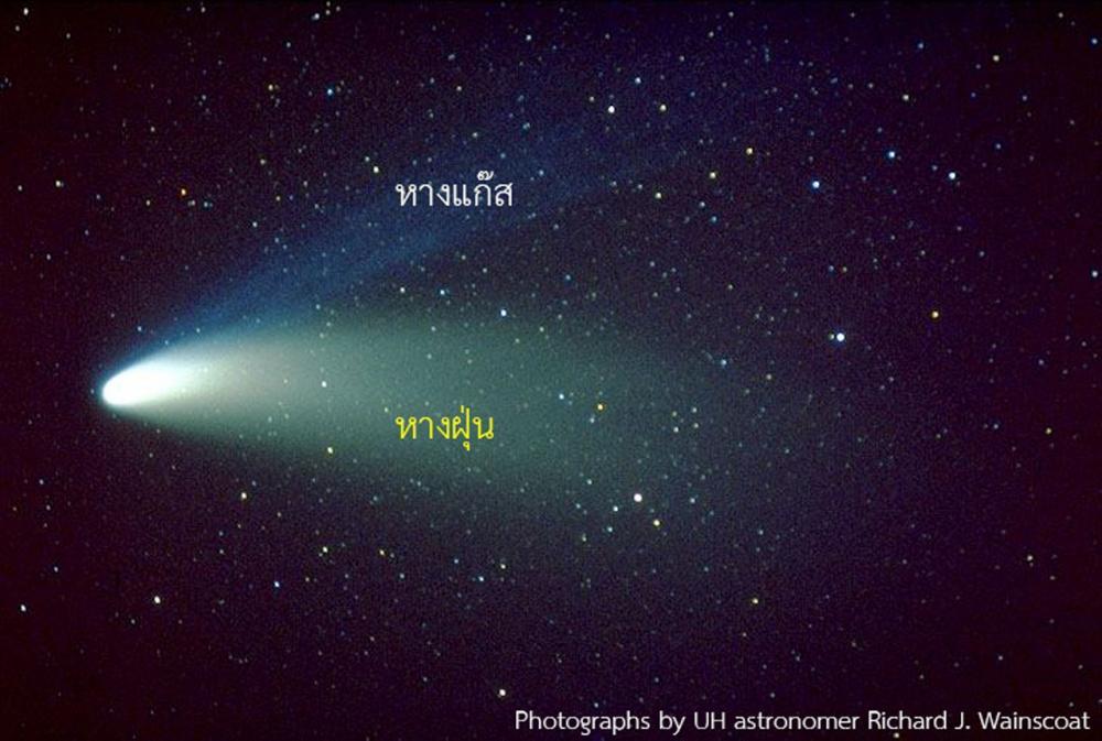 ดาวหางเลิฟจอย สามารถมองเห็นได้ด้วยตาเปล่า
