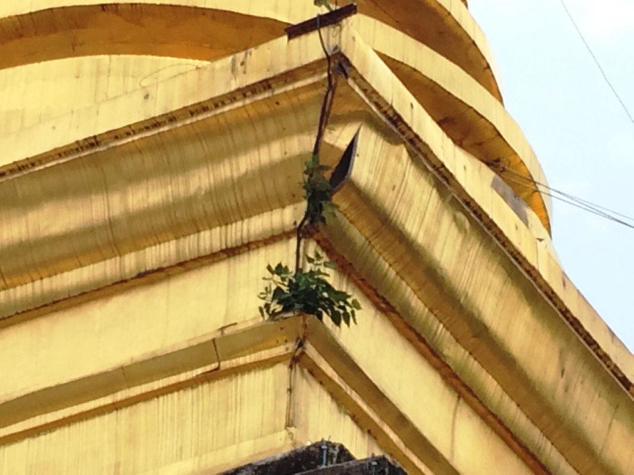วัดพระธาตุช้างค้ำวรวิหาร จ.น่าน ทองจังโกปริแตกทางด้านทิศตะวันตกของพระธาตุ