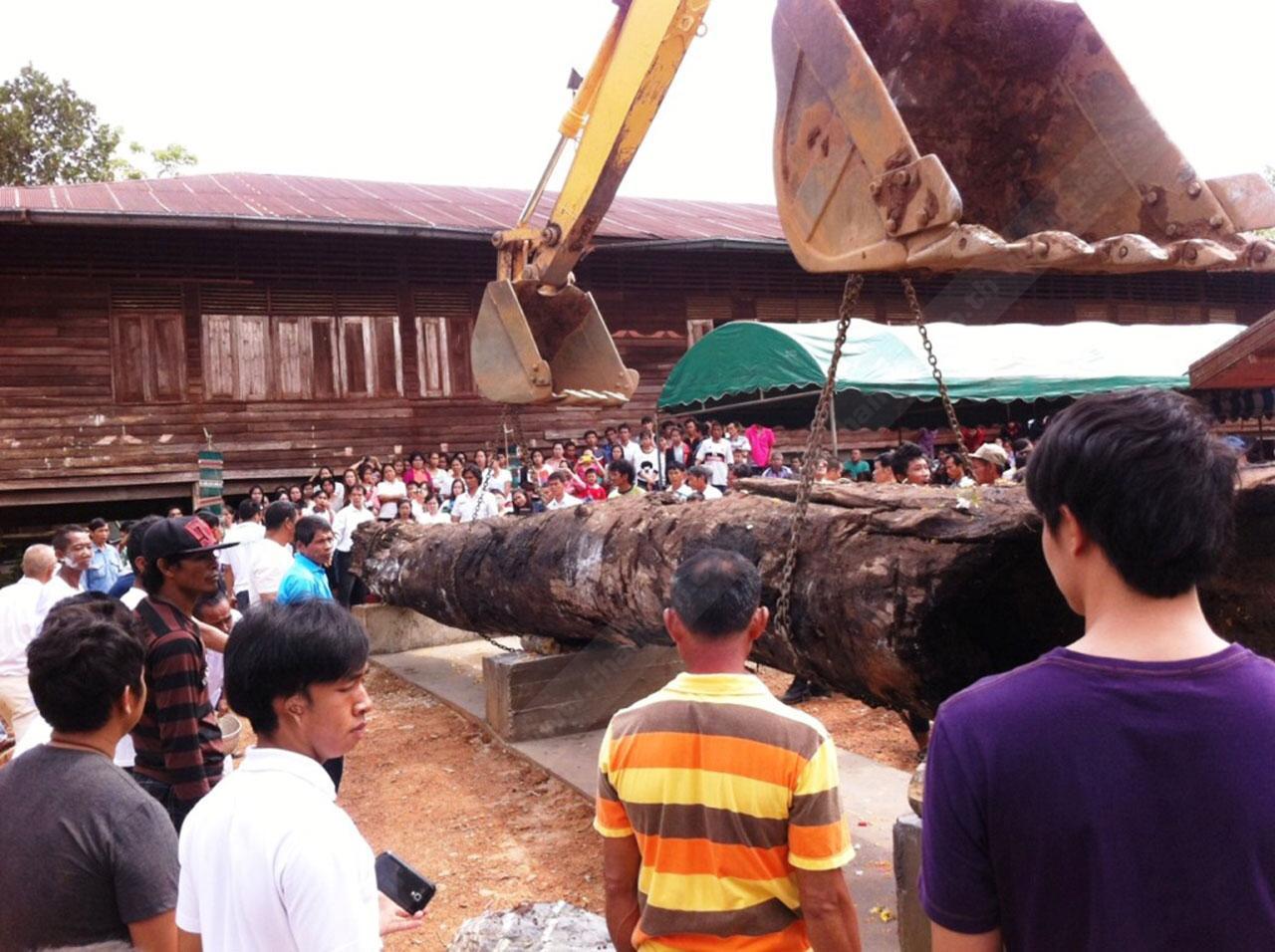ชาวบ้านใช้แบ็กโฮ นำไม้ตะเคียนทองขึ้นจากลำน้ำว้า