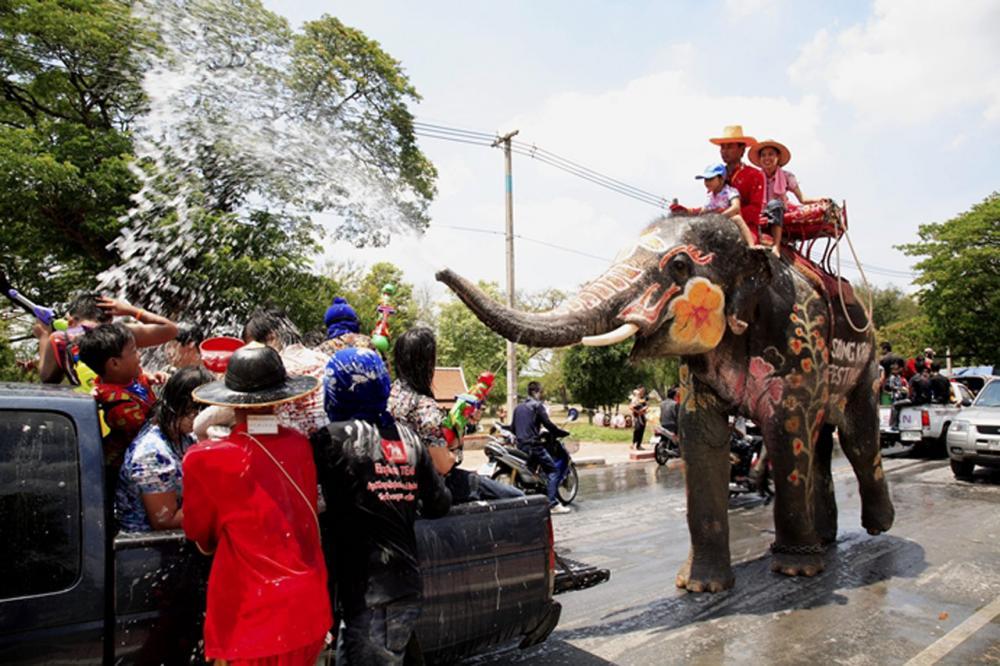 สาดน้ำสงกรานต์กับช้าง