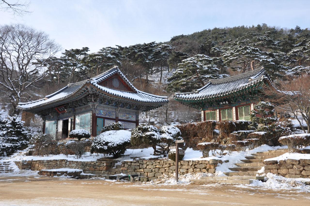 วัดชองดุง - Jeondeungsa ...ตอนหิมะตกสวยมาก