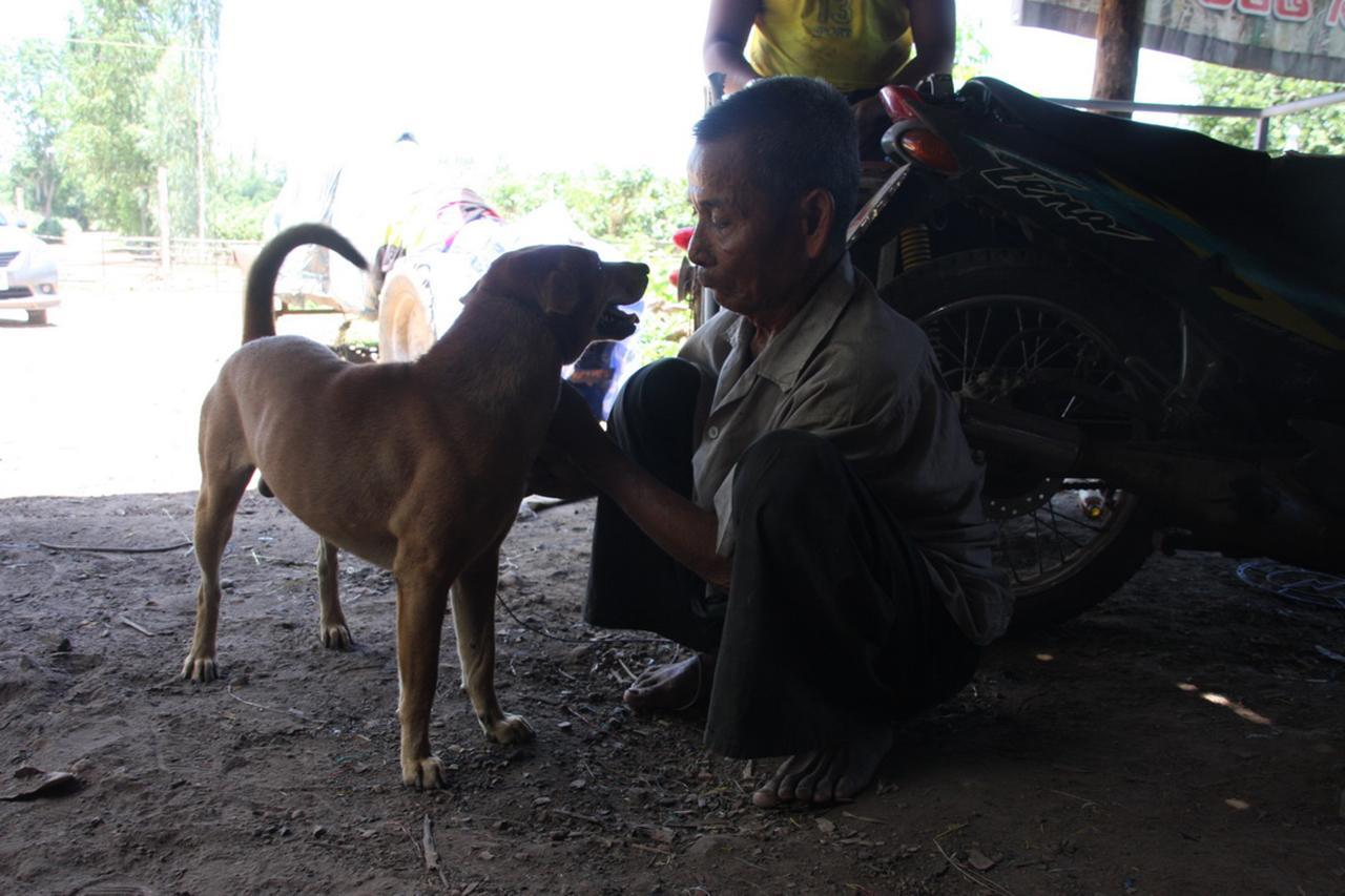 แม่สุนัขตัวนี้มีบุญคุณต่อตนมาก และทุกวันนี้ใครด่าหรือเรียกตนว่า ลูกหมา ตนไม่เคยว่า เพราะหมามีบุญคุณเลี้ยงมาจนโต รอดตายมาได้เพราะนมหมา