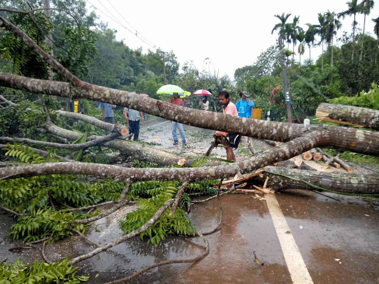 อาสาสมัคร หน่วยกู้ภัยช่วยกันตัดต้นไม้ที่โค่นขวางถนนเพื่อเคลียร์พื้นที่