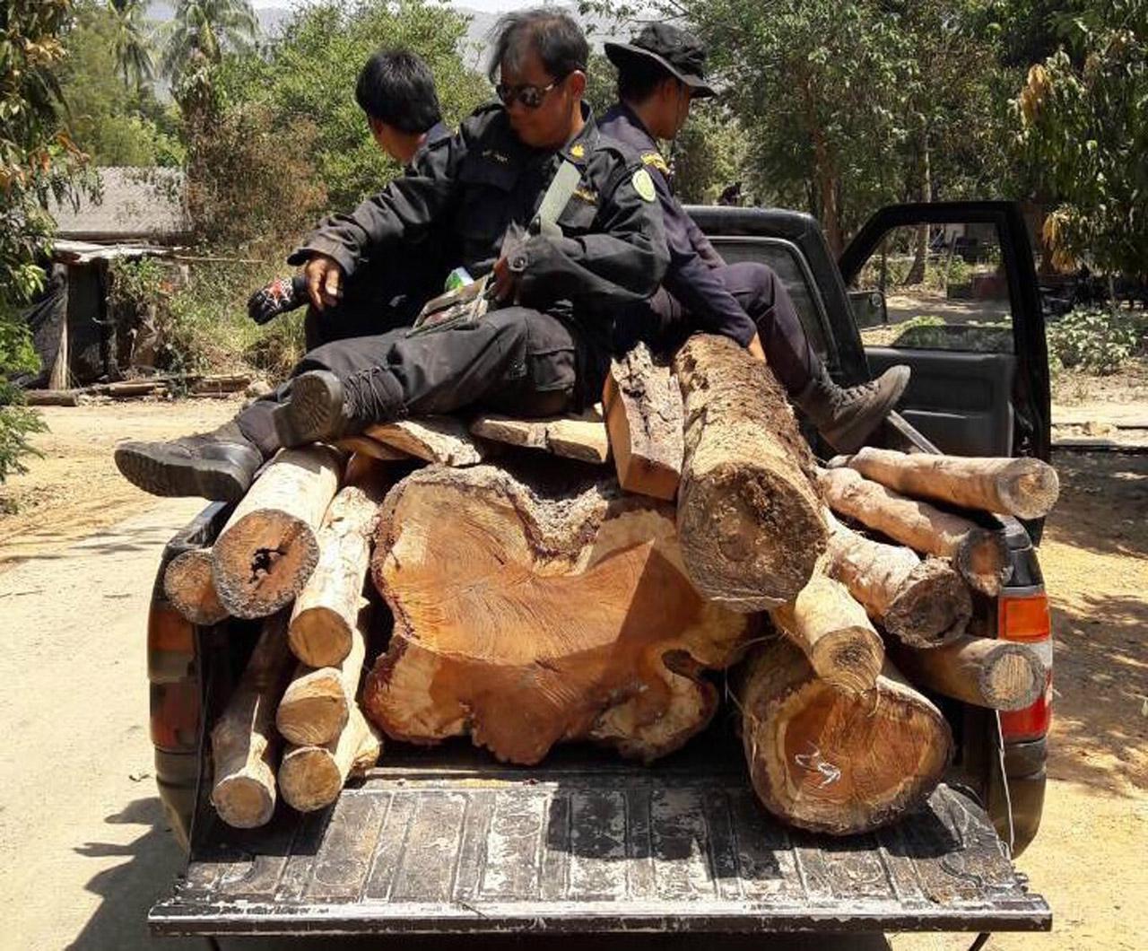 จนท.ป่าไม้ ตรวจค้นพบไม้ต้องห้าม รวมมูลค่า 5แสนบาท