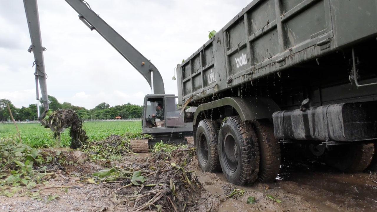 ทหารขนเครื่องมือเร่งกำจัดผักตบชวา ในแม่น้ำเจ้าพระยา ที่จ.ชัยนาท