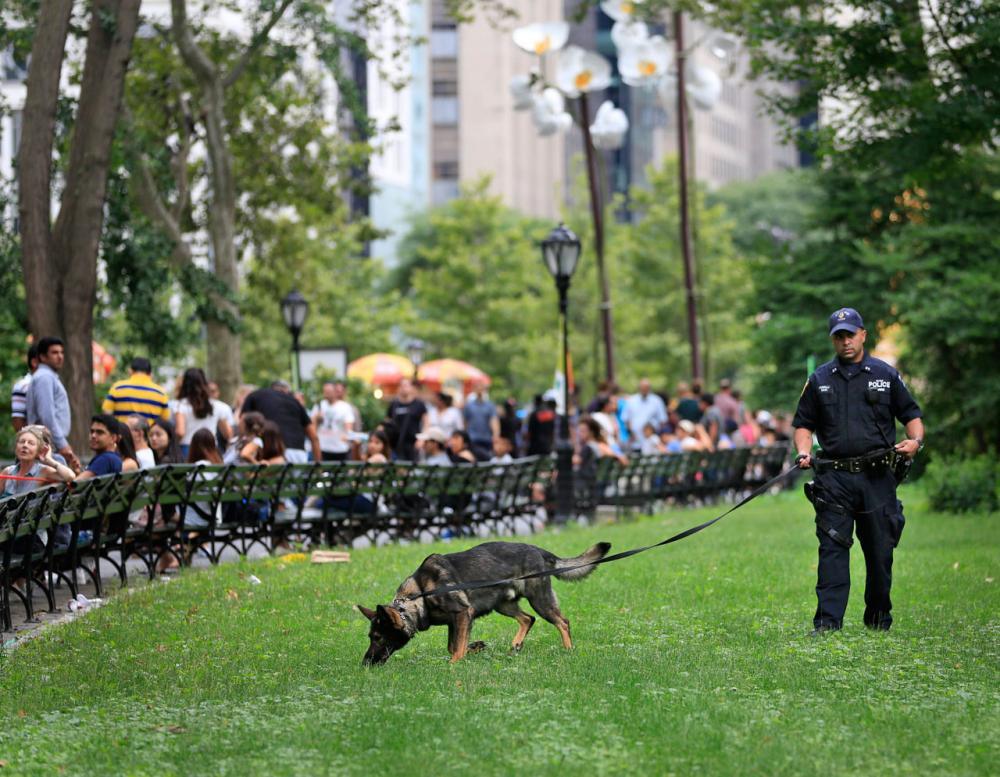 เจ้าหน้าที่และสุนัขตำรวจ ค้นหาวัตถุระเบิดที่สวนสาธารณะเซ็นทรัลพาร์ค