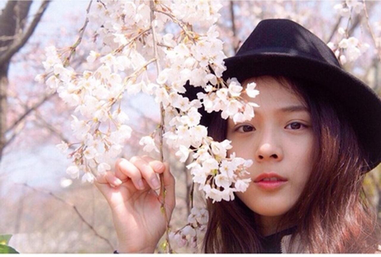 ซากุระ เปรียบดั่ง หัวใจของคนญี่ปุ่น