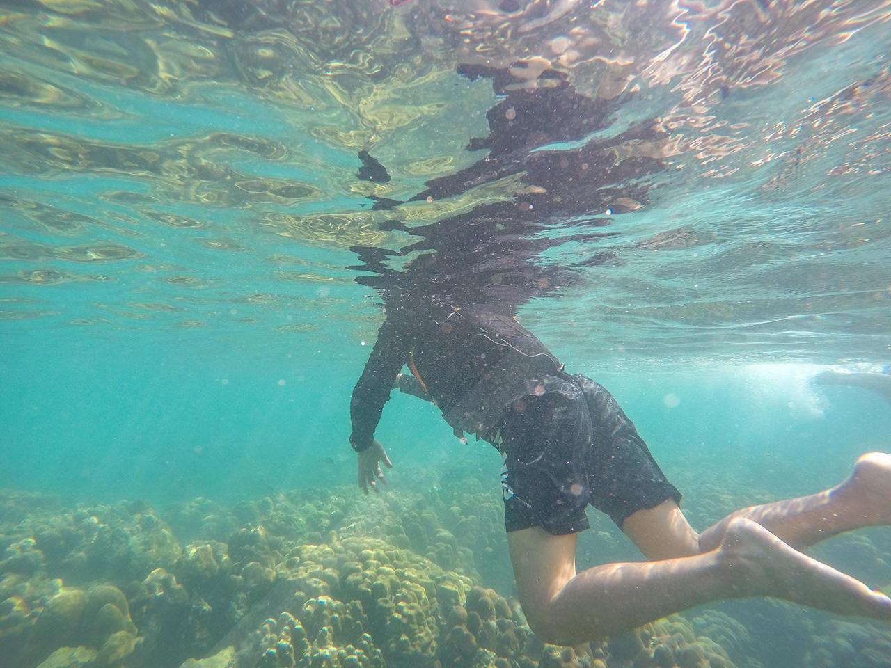 ดำน้ำรักษาแนวปะการัง