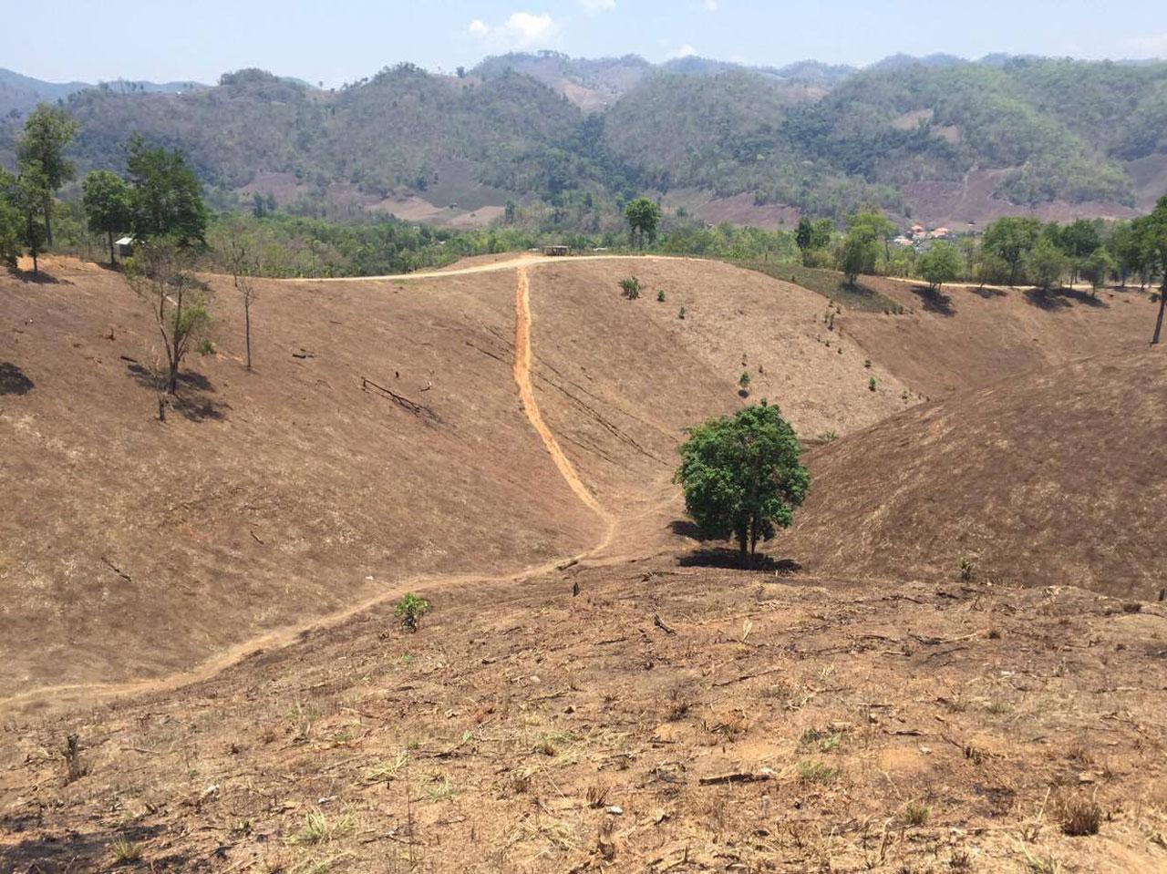 เป็นภาพที่สะเทือนใจคนไทยเป็นอย่างมาก สำหรับผืนป่าต้นน้ำน่าน ที่วันนี้เหลือเพียงภูเขาหัวโล้น