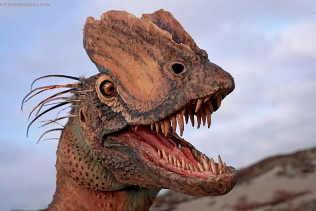Credit : Brian Engh / The Saint George Dinosaur Discovery Site