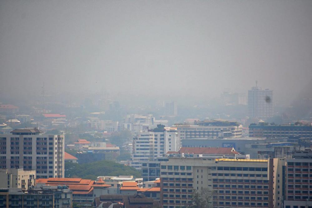 ตัวเมืองเชียงใหม่มีสภาพปกคลุมไปด้วยหมอกควันที่เกิดขึ้นจากการลักลอบเผาป่าดอยสุเทพ ทำให้ค่า PM 2.5 สูงเกินค่ามาตรฐาน และถูกจัดเป็นเมืองที่มีอากาศย่ำแย่อันดับ 1 ของโลก.
