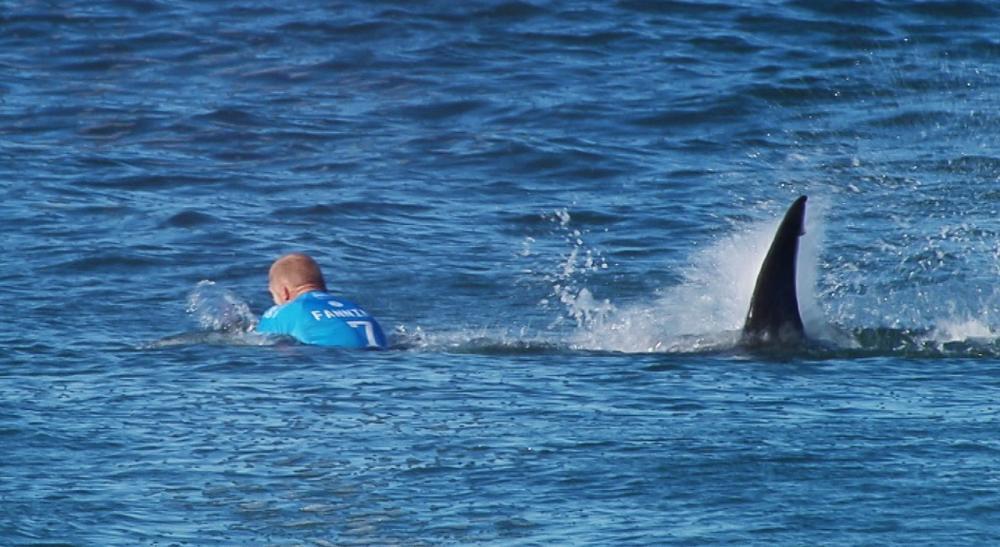 เหตุการณ์ขณะที่มิกค์ แฟนนิ่ง นักเล่นกระดานโต้คลื่นชาวออสเตรเลียกำลังถูกฉลามจู่โจมระหว่างแข่งขันเมื่อปี 2015 เคราะห์ดีที่เขารอดมาได้อย่างปลอดภัย