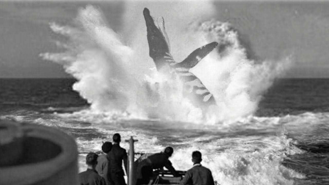 ภาพจำลองเหตุการณ์สัตว์ประหลาดถูกตอร์ปิโดจากเรือดำน้ำอู-28.