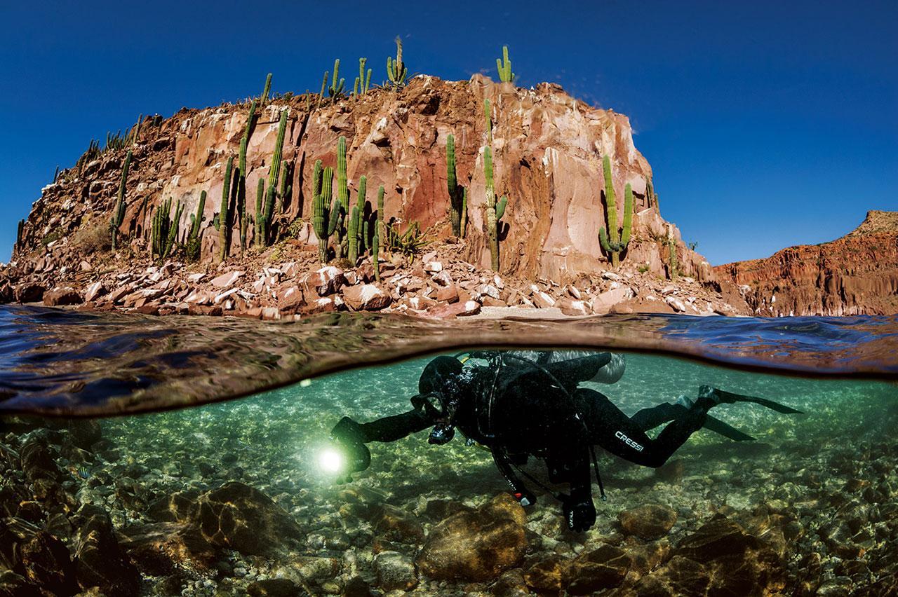 ออกตาเบียว อาบูร์โต ดำน้ำใกล้อิสลาเอสปีรีตูซานโตในอ่าวแคลิฟอร์เนีย นักชีววิทยาทางทะเลผู้นี้ศึกษาว่า เพราะเหตุใด เขตสงวนบางแห่งประสบความสำเร็จ ขณะที่แห่งอื่นล้มเหลว เขาพบว่าความลับอยู่ที่ชุมชนซึ่งอาศัยอยู่ที่นั่น