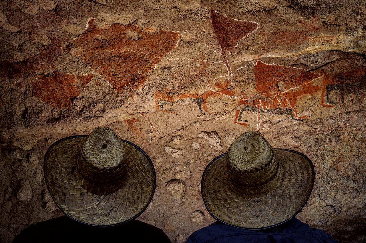 ชีวิตในมหาสมุทรเป็นส่วนสำคัญในประวัติศาสตร์ของบาฮา วัฒนธรรมยุคก่อนชาวสเปนมาถึงวาดรูปปลากระเบน ฉลาม โลมา ปลาทูน่า และแมวน้ำ ตามหุบผาชันอันห่างไกลของเทือกเขาเซียร์ราเดซานฟรันซิสโก
