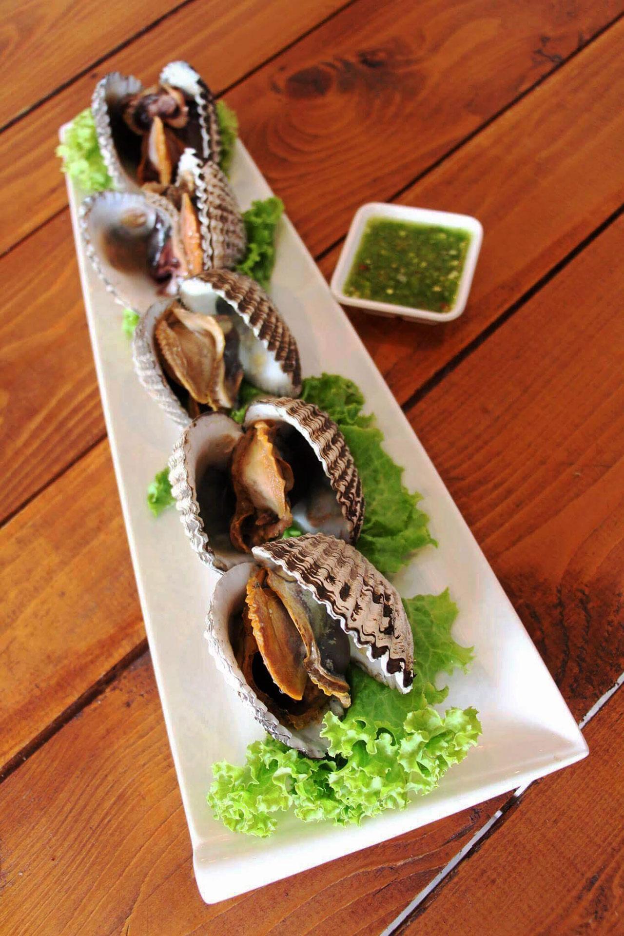 หอยแครงจักรพรรดิ.