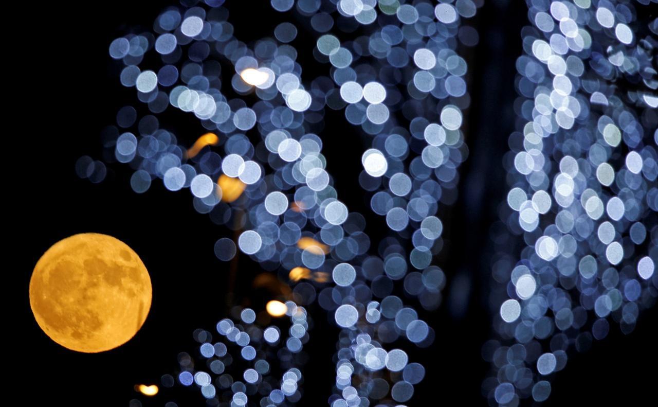 ซุปเปอร์มูนลอยขึ้นหลังต้นคริสต์มาสในเมืองมาร์แซ ของฝรั่งเศส