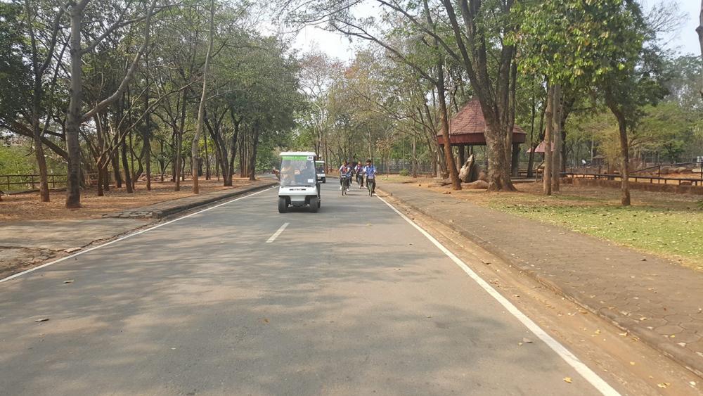 ขับรถกอล์ฟและปั่นจักรยานชมสวนสัตว์.