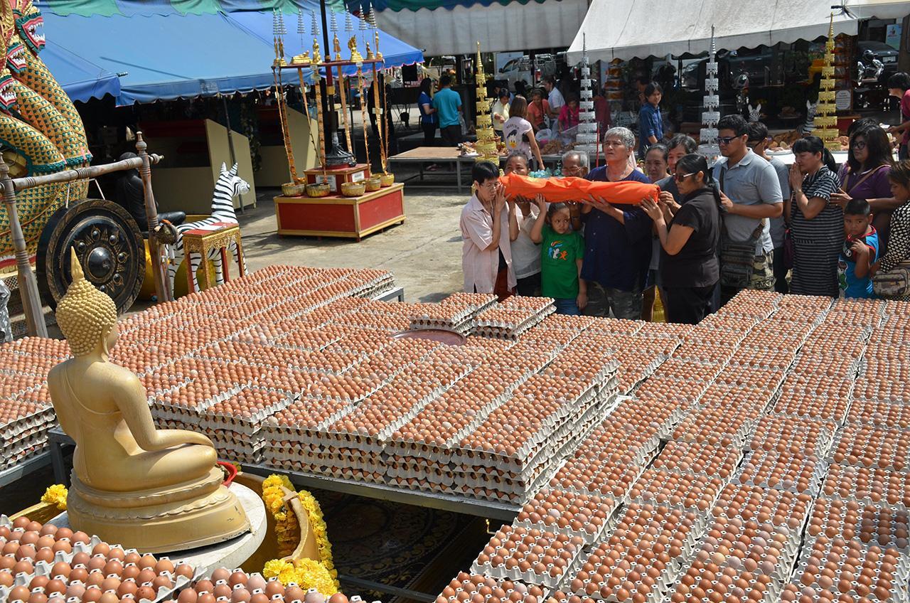 ไข่ไก่จำนวน 2 แสนฟอง ที่ญาติโยมนำไปถวายแก้บน หลวงพ่อสมหวัง หลังจากบนขอโชคลาภแล้วได้รับโชคตามที่บนเอาไว้เป็นประจำ.
