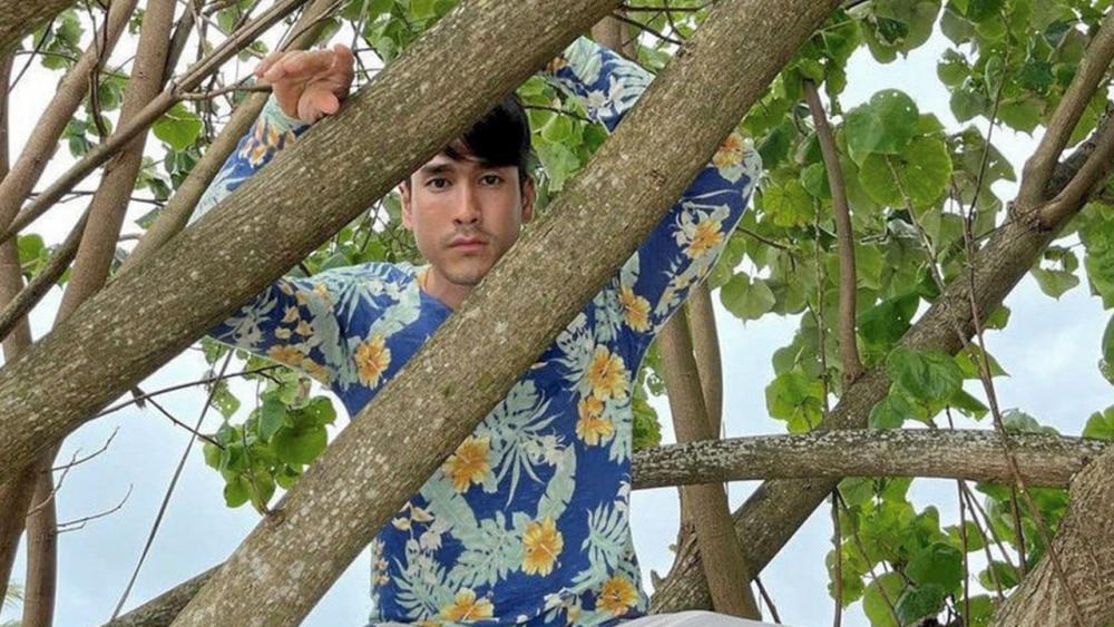 """พบคนซน 1 อัตรา เมื่อ ณเดชน์ หักห้ามความกลัวปีนต้นไม้ขึ้นไปซะสูง เพิ่งมาคิดถึงคำเตือน """"ยิ่งสูงยิ่งต้องระวัง"""" ตอนปีนลงนี่แหละ ...แหม ไม้เรียวในมือ ญาญ่า สั่นไปหมดแล้ว!"""
