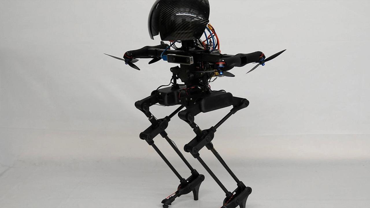 แรงบันดาลใจจากนก สร้างหุ่นยนต์ลีโอนาร์โด
