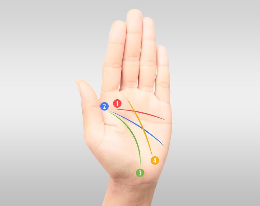 """4 วิธี """"ดูลายมือ"""" แต่ละเส้น บอกอะไรได้บ้าง"""
