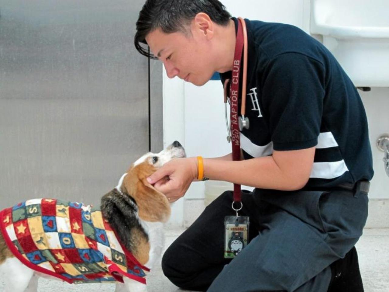 นสพ.เกษตร สุเตชะ สัตวแพทย์ประจำคลินิกสัตว์เลี้ยงพิเศษ โรงพยาบาลสัตว์ คณะสัตวแพทย์ มหาวิทยาลัยเกษตรศาสตร์ (มก.)